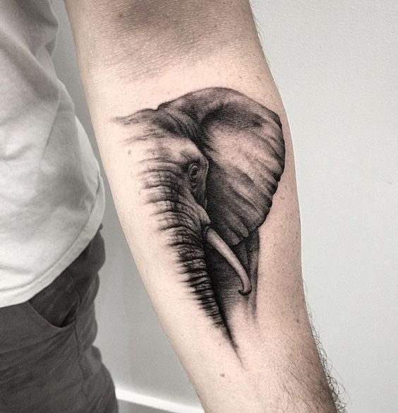 Majestic Elephant Forearm Tattoo