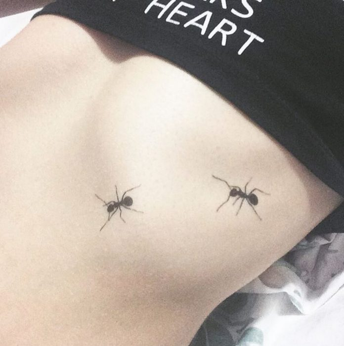 Ants Belly Tattoo