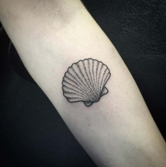 Dotwork Shell Forearm Tattoo