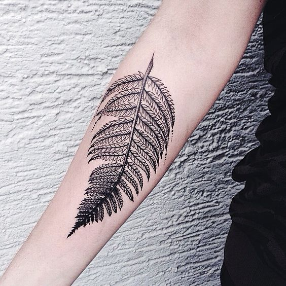 Meticulous Fern Forearm Tattoo