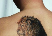 Realistic Lion Back Tattoo