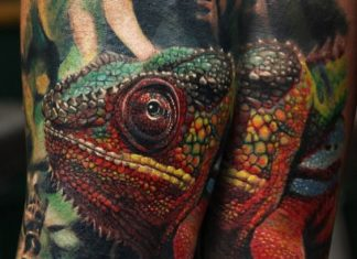 Changing Chameleon Full Sleeve Tattoo