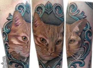 Golden Cat Portrait Sleeve Tattoo