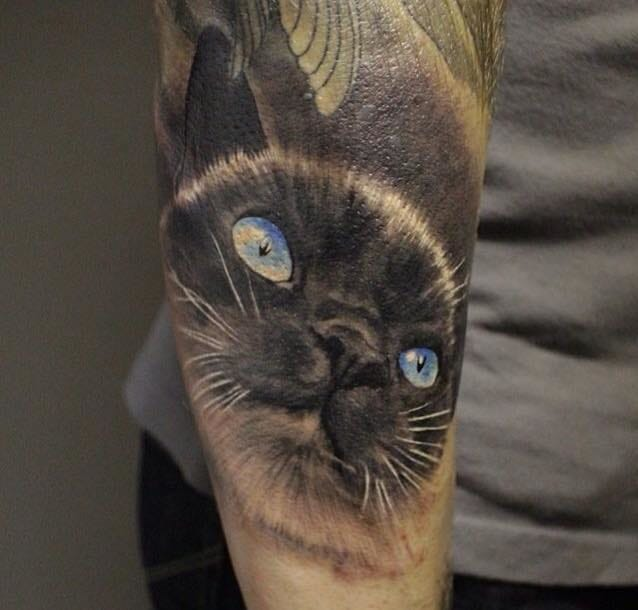 Realistic Cat Arm Tattoo