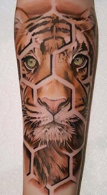 Honeycomb Segmented Tiger Tattoo