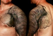 Cool Elephant Shoulder Cap Tattoo