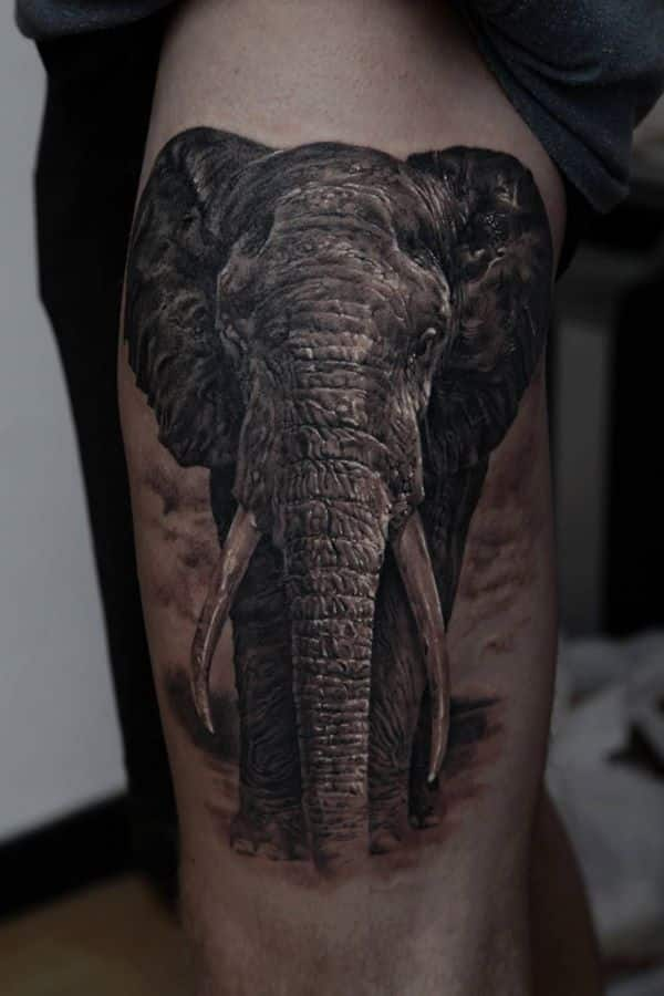 Realistic Elephant Tattoo