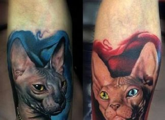 Beautiful Sphynx Cat Forearm Tattoos