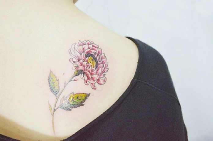 Illustrative Style Chrysanthemum Tattoo