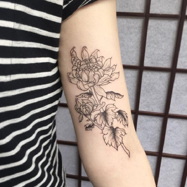 Outlined Chrysanthemum Arm Tattoo