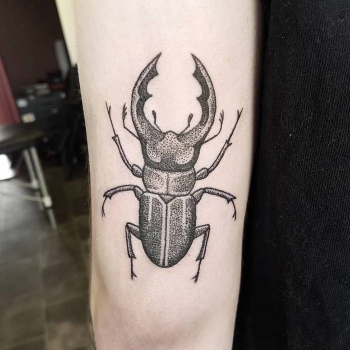 Dotwork Stag Beetle Arm Tattoo