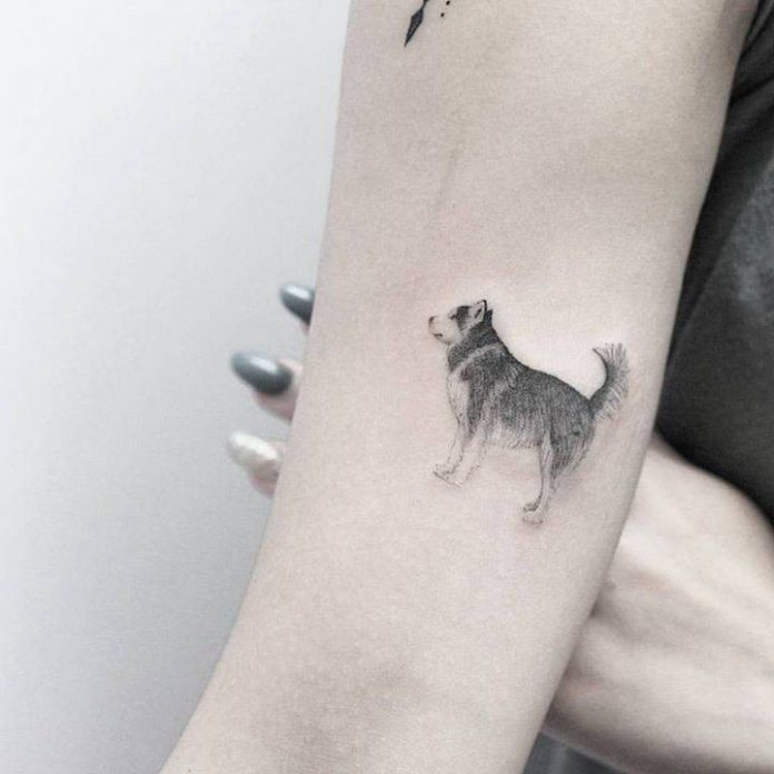 Single Needle Dog Arm Tattoo