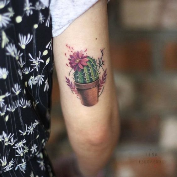 Stunning Cactus Arm Tattoo