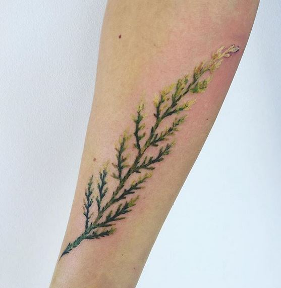 Botanical Stalk Forearm Tattoo