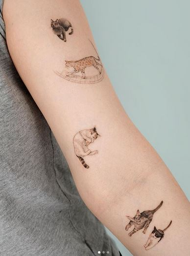 Adorable Cats Arm Tattoo