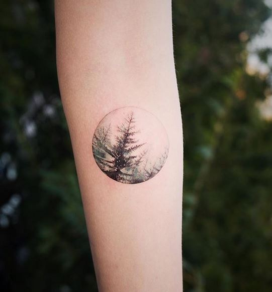 Pine Trees Forearm Tattoo